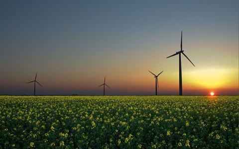 Aerogeneradores en una plantación de colza en Sandesneben, Alemania. En esta foto pueden visualizarse las tres principales fuentes de energías renovables: viento, Sol, y biomasa.